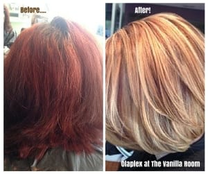 Olaplex Results... The Vanilla Room 1